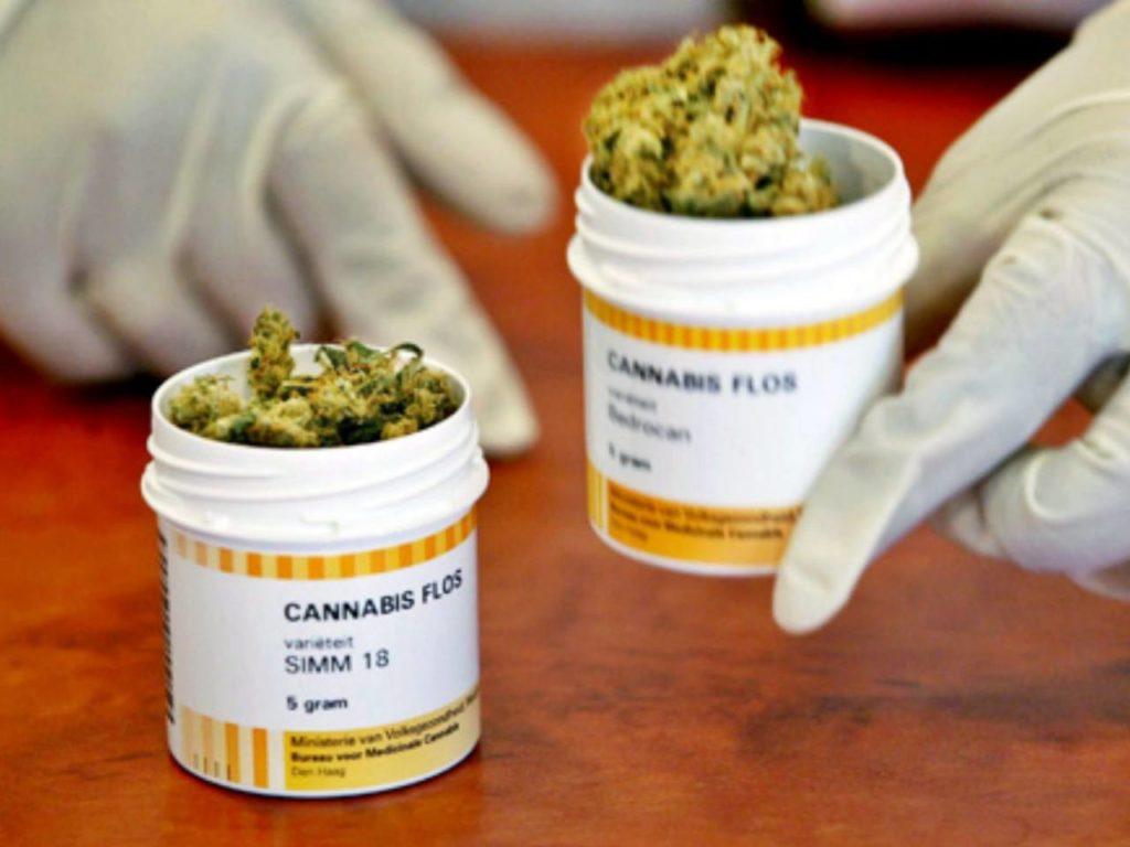 Reformas del COIP sobre cannabis medicinal
