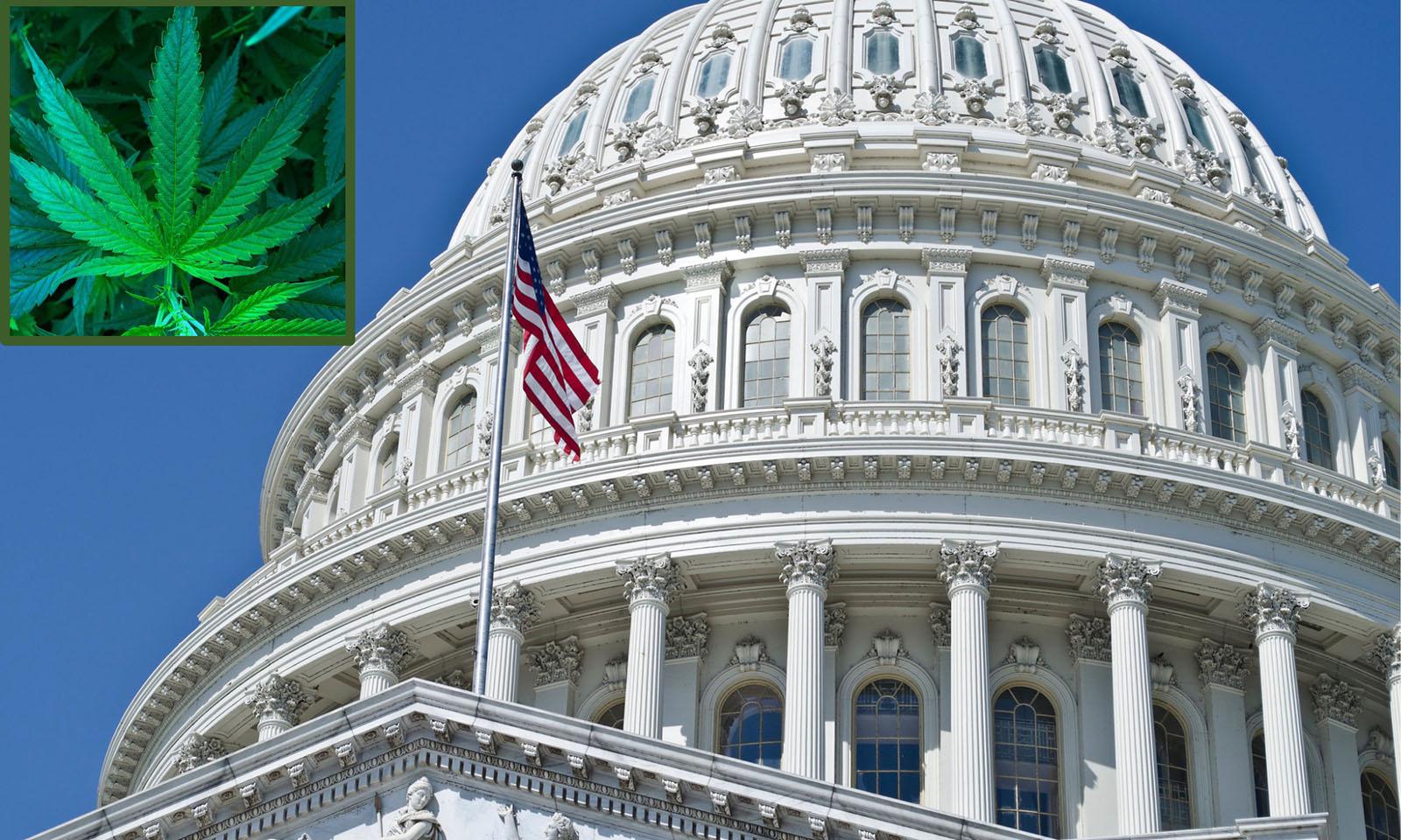 Federal Marijuana Legalization