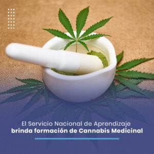 Sena-Noticia